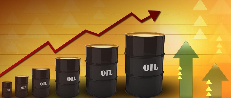 """النفط يحقق ارتفاعا بـ 13 % متفاعلا مع اتفاق """"أوبك"""""""